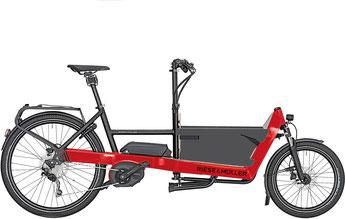 Riese und Müller Cargo e-Bike / Lastenfahrrad mit Elektromotor Packster
