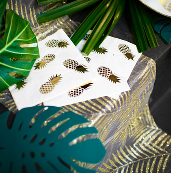 deco anniversaire tropical chic - tropical party