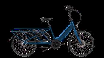 Hercules Rob Family F360 Lasten e-Bike / Lastenfahrrad mit Elektromotor 2021 mit Bosch Antrieb