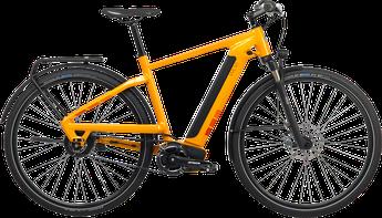 Bergstrom WLV-760 Trekking e-Bike 2018