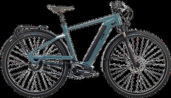 Bergstrom GTV-850 Trekking e-Bike 2018
