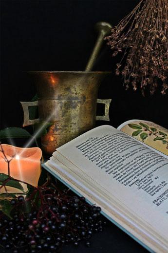 Das Bild zeigt einen antiken Mörser, getrocknete Kräuter und Holunderbeeren sowie ein Kräuter-Lehrbuch