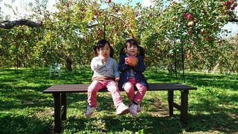 竹村農園 りんご狩り