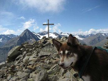 """Auf dem """"Wilden Mannle"""" (3.020 m)"""