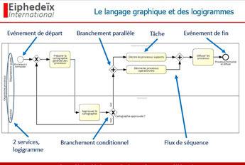 L'affectation des tâches et activités des processus se représente à l'aide de logigrammes dans la modélisation de processus