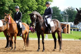 Prüfungen für Reiter und Pferde