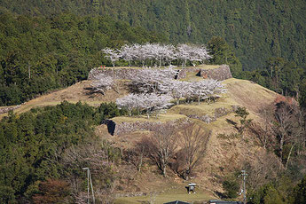 Akagi Castle Ruins (Akagijouato)