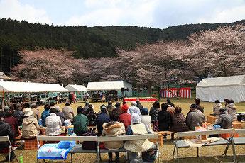 Komori Cherry Blossom Festival