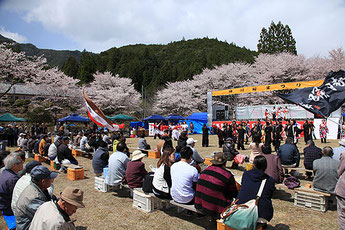 Home of the Nachi Black Stone,  Kumano Kamikawa Cherry Blossom Festival
