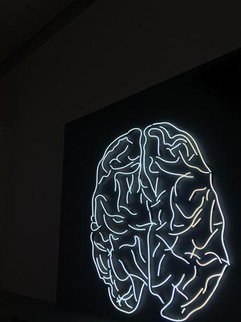 Abhängigkeit und Gehirn