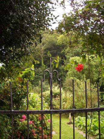 Gartengestaltung Korfmacher Kreis Herford Gärtner Garten- und Landschaftsbau, Pflanzarbeiten, Baumpflege, Schwimmteich