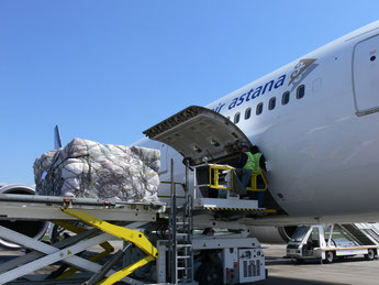 Air Astana is back in positive territory  /  source: Olessya Kononova