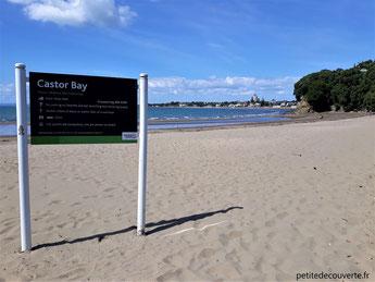 - Castor Bay - Auckland au loin - Nouvelle-Zélande -