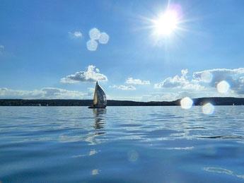 Segelboot auf dem Bodensee