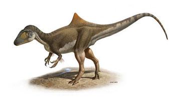"""Reconstrución del aspecto en vida del dinosaurio carnívoro Concavenator corcovatus (""""el cazador jorobado de Cuenca""""). / Raúl Martín"""