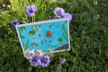 Une carte postale de Moka la loutre dans des fleurs violettes réalisée par Cloé Perrotin pour le collectif Moka la loutre