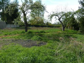Grundstück in Hohenleipisch