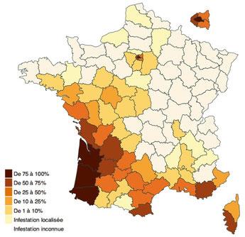 Carte départementale des infestations (août 2015) % des communes infestées par département.