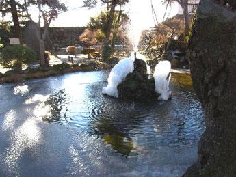 池が半分凍りかけていました