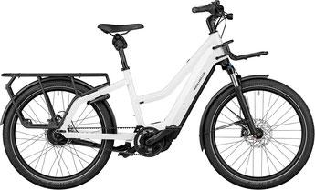 Riese und Müller Multicharger Mixte Lasten e-Bike / Lastenfahrrad mit Elektromotor 2019