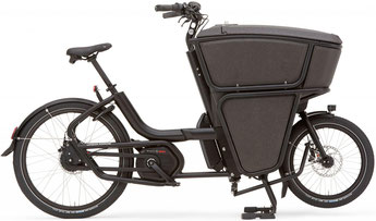 Urban Arrow Shorty Lasten e-Bike / Lastenfahrrad mit Elektromotor 2019