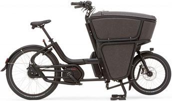 Urban Arrow Shorty Lasten e-Bike / Lastenfahrrad mit Elektromotor 2021