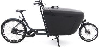 Babboe Pro Bike Mittelmotor Lasten e-Bike / Lastenfahrrad mit Elektromotor