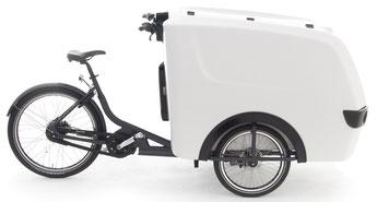 Babboe Pro Trike XL Lasten e-Bike / Lastenfahrrad mit Elektromotor