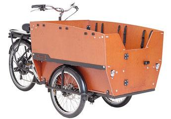Babboe Mini-E Lasten e-Bike / Lastenfahrrad mit Elektromotor 2017