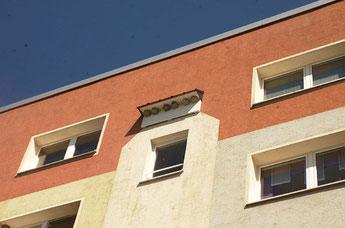 Ein sanierter Wohnblock der Wohnungsbaugenossenschaft Zwickau-Land e.G. mit künstlichen Nisthilfen für Mehlschwalben. Foto: Heiko Goldberg