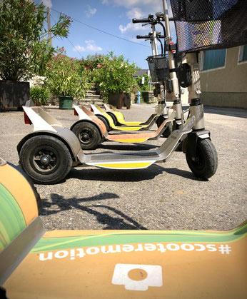 Made in Austria E-Scooter Verleih in Niederösterreich. Ausflug und Touren durch die Wachau, Besuch von Winzer und Heurigen in Niederösterreich