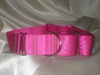 Martingale, Halsband, 4cm, Gurtband pink