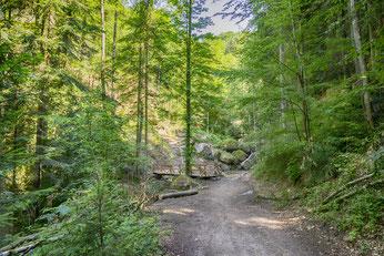 Sichere Wanderwege für die ganze Familie in Bad Kreuzen
