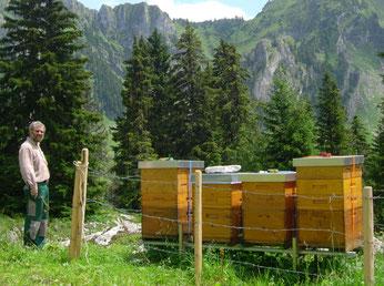 Wander-Bienenstand in den Freiburger Voralpen (Brecca-Schlund ob Schwarzsee)