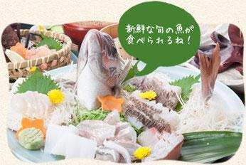 新鮮な旬の魚が 食べられるね!