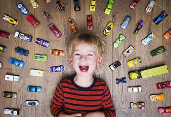 Travelcontrol als elektronisches Fahrtenbuch ist universell und als ordnungsgemäße steuerliche Abrechnung für jede Fahrzeugmarke möglich