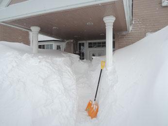 作業も雪もかなりハード・・・
