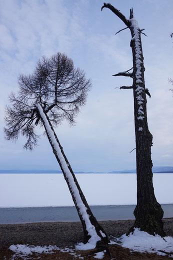 See, Winter, Beratung, Psychotherapie, Angebot