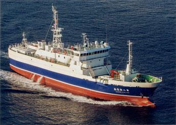 遠洋底はえ縄漁船