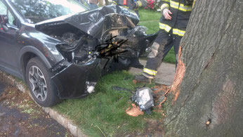 MVA- South Martine - Car Into Tree