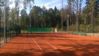 Новая Москва, поселок Крекшино, частный корт, покрытие Теннисит.