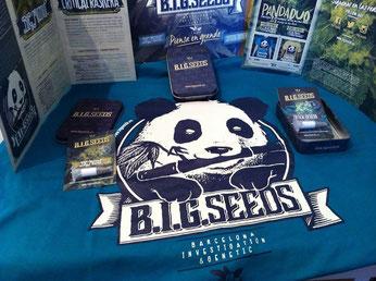 sorteo semillas marihuana feminizadas BIG Seeds, concurso semillas marihuana y camiseta banco semillas BIG Seeds