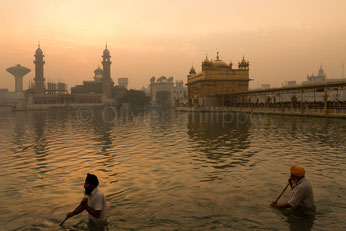 Olivier Philippot Photo - Reportage photo - Amritsar - Temple d'Or des Sikhs