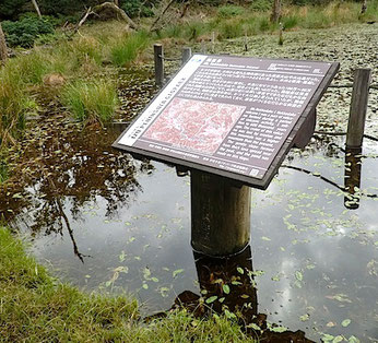 池の説明板