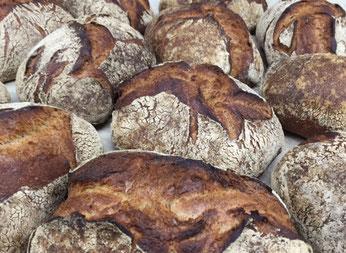Bäckerei Küster Göttingen Aktion Angebot Aktionen Angebote der Woche Wochenangebot Wochenaktion Wochenangebote Wochenaktionen