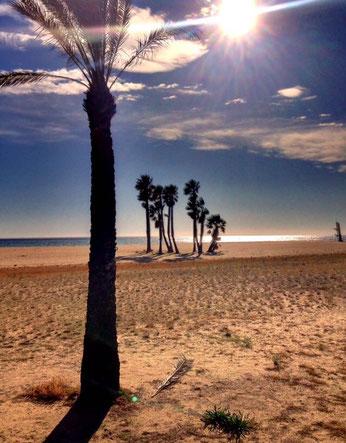 Übernachtungsplatz 40km nach St. Sadurni am Strand von El Monestir