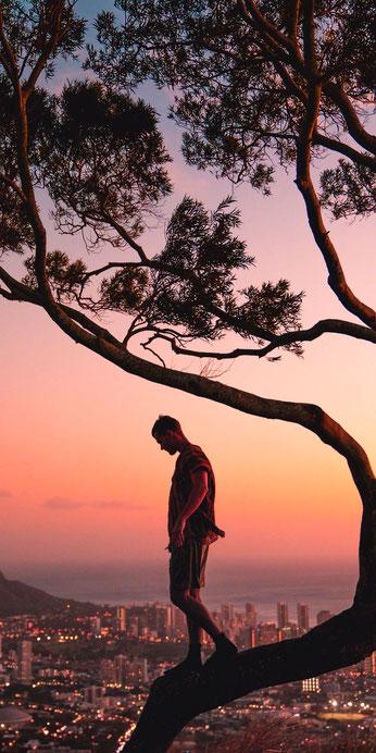 Mann steht auf Baum  - NLP Neuroliguistisches Programmieren