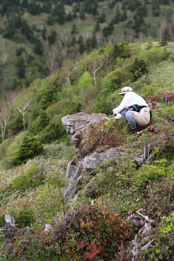 崖は恐いけど、気持ちのよい場所でした