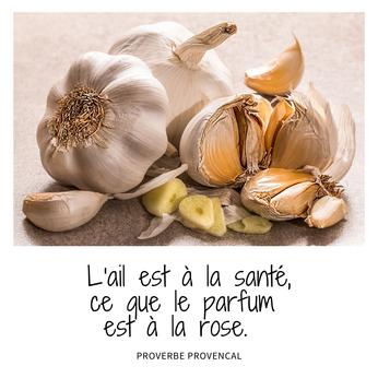 proverbe - Crédits Pixabay