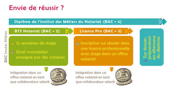 IES Sainte-Marie (Bourges) | La poursuite d'études après le BTS Notariat
